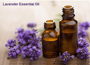 Lavender essential oil aromatherapy